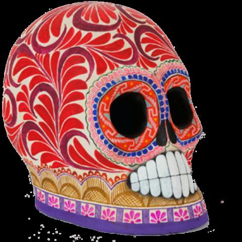 Artesanía de Cráneo pelón grande