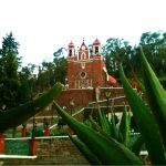 Iglesia del Calvario, árbol de la vida. Foto Gustavo Miranda